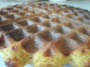 Soaked Whole Grain Pumpkin Waffle
